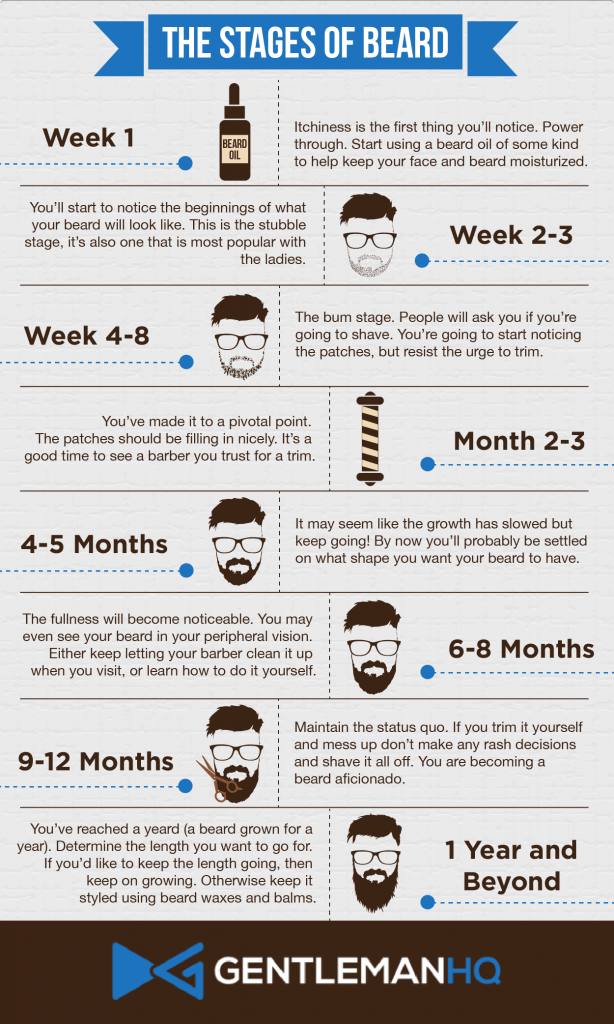 stages of beard growth infographic